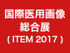 2017-item